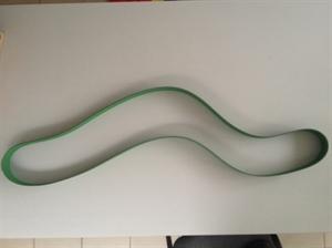 Golyógyorsító laposszíj olasz, képe